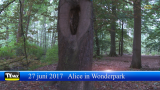 Alice in Wonderpark